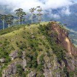 טיול בהרים של דרום סרי לנקה