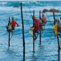 דייג משפחתי